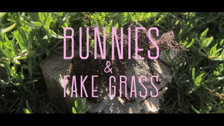 bunnies and fake grass